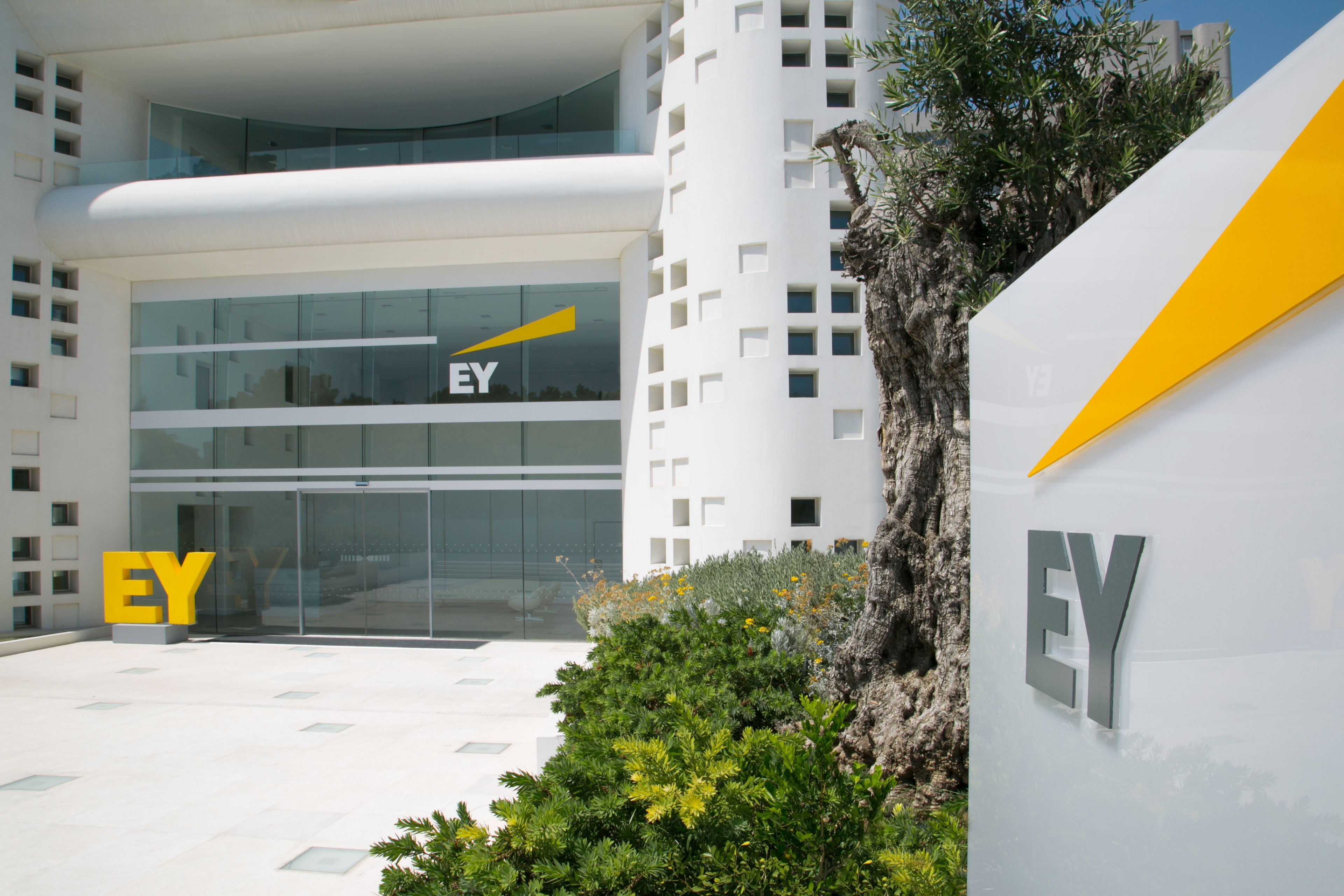 Ernst & Young -  Corporate Video Production